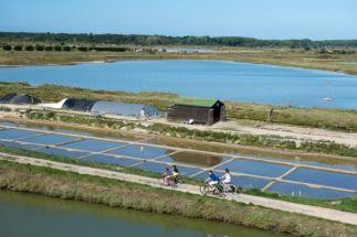 Sentier du sel Ile d'Olonne - crédit Antoine Martineau