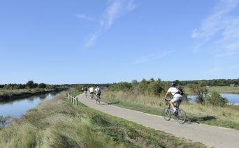 Vélo dans les marais d'Olonne - copyright Beltrami