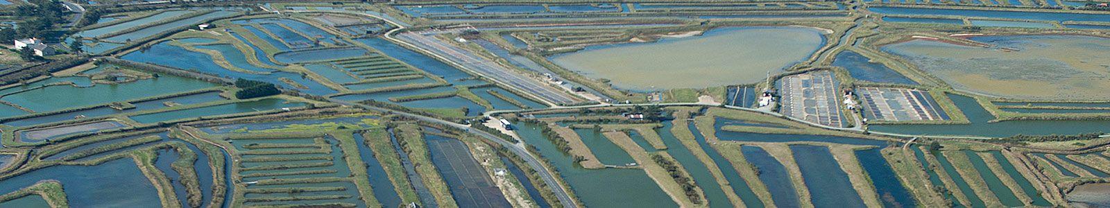 Vue aérienne des marais - crédit photo Antoine Martineau