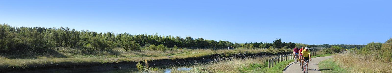 Pistes cyclables dans les marais