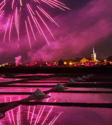 Fireworks - Copyright Francis Leroy